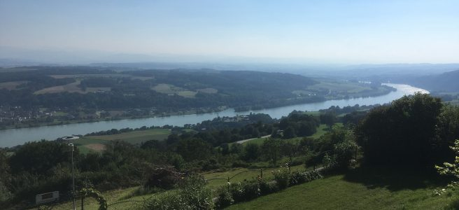 Blick von Maria Taferl auf die Donau